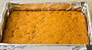 Sweet Potato Chocolate Chips Squares-1